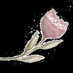 FLOWER_PINK-01