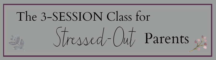 3 Session Class Website Banner
