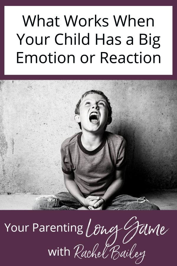 What Works When Your Child Has a Big Emotion or Reaction